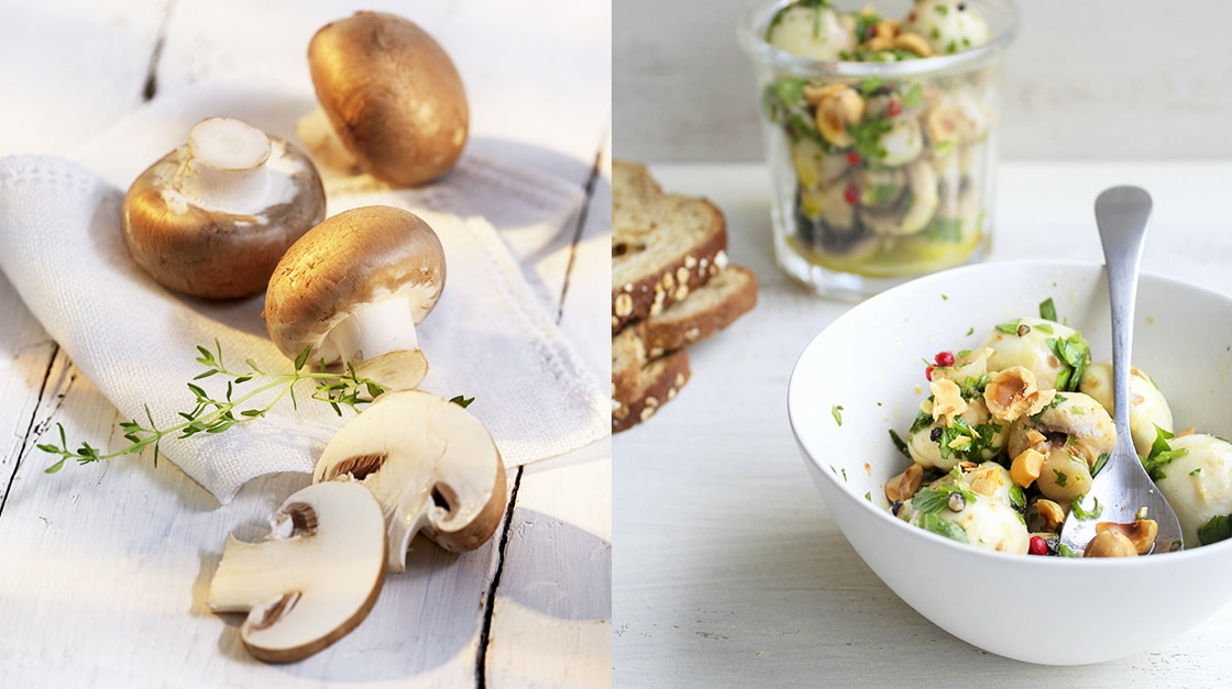 mushrooms: fine dining lovers