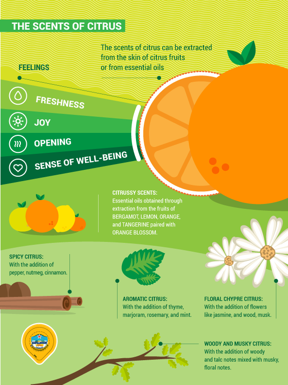 citrus scents in the cosmetics sector