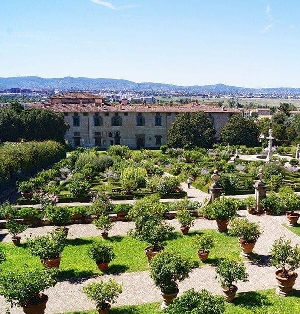 Italian Villa and citrus fruits plants